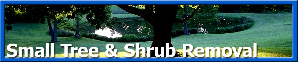 Grounds care - Small tree and shrub removal