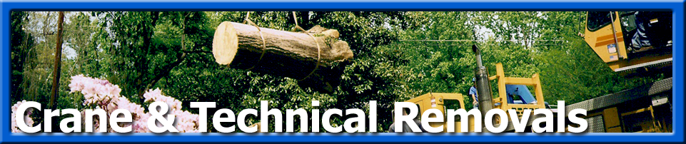 Tree Care - Crane & Technical removal