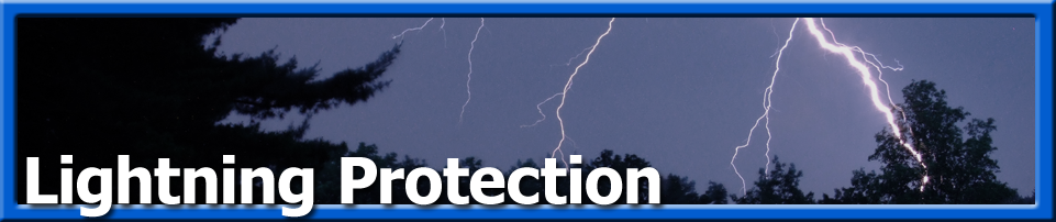Tree Care - Lightning Protection