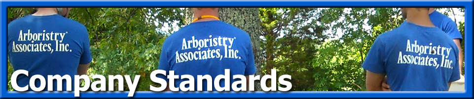 Values - Company Standards