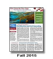 aaiview-15-3fall